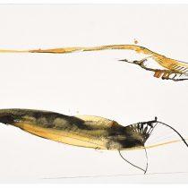 2014 Bato, Moby Dick II, tecnica mista su tela, cm 100x200_Roma 16 dic 2014_