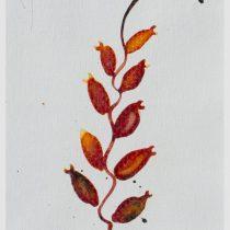 Bato, Piccola carnivora, tecnica mista su tela, cm 17x9