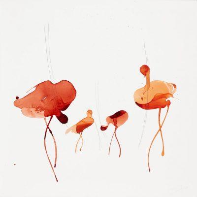 2018 bato, Ibis scarlatti, cm 100x100 tecnica mista su tela